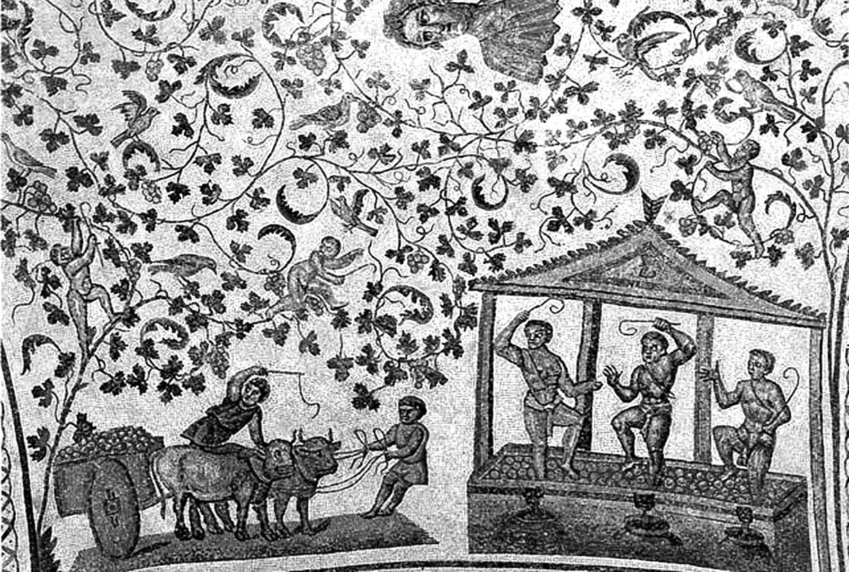 Culture et civilisation du vin
